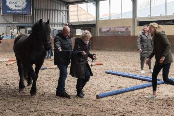 Activiteit in manege met paard